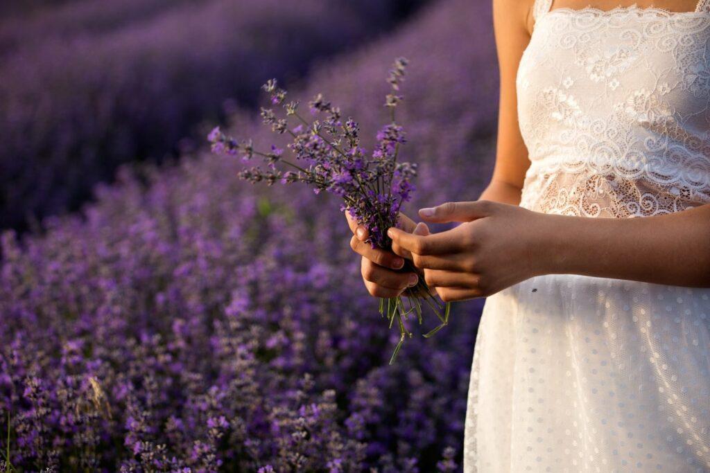 Spousta bylin, které mají pozitivní účinky na zdraví, se nachází volně v přírodě.