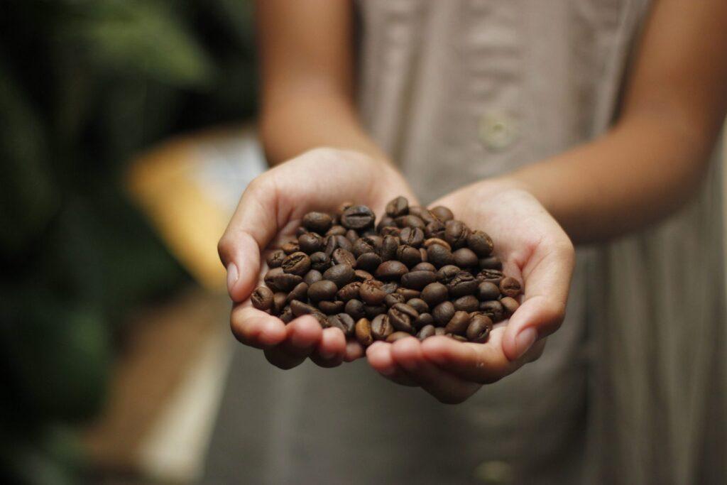 Coffee raw vegan ceesecake ocení každý milovník kávy.