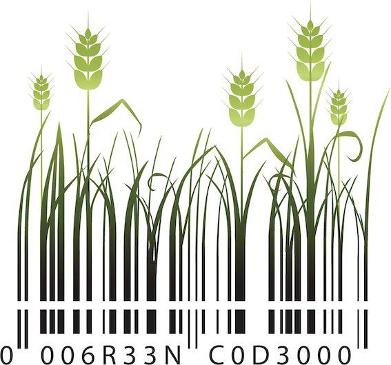 Rostilnná produkce planetě škodí mnohem méně.