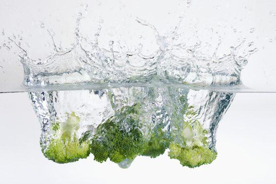 Znečišťování vod je doménou živočišné produkce.
