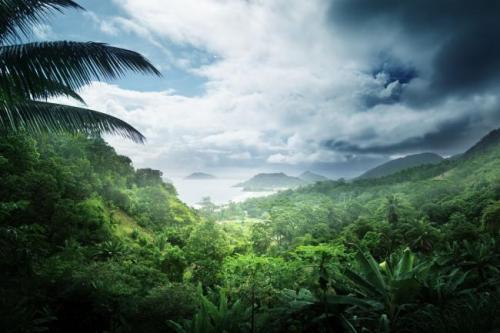 Účastníky rozhovoru spojuje snaha vyhýbat se palmovému oleji.